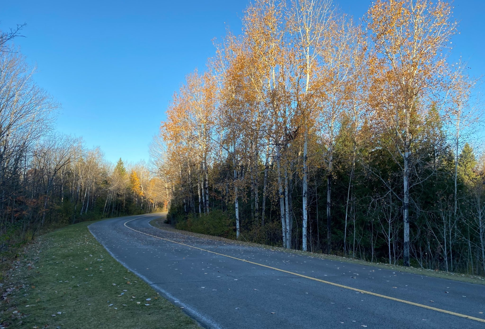 Promenade du parc de la Gatineau dans l'entre-deux saisons