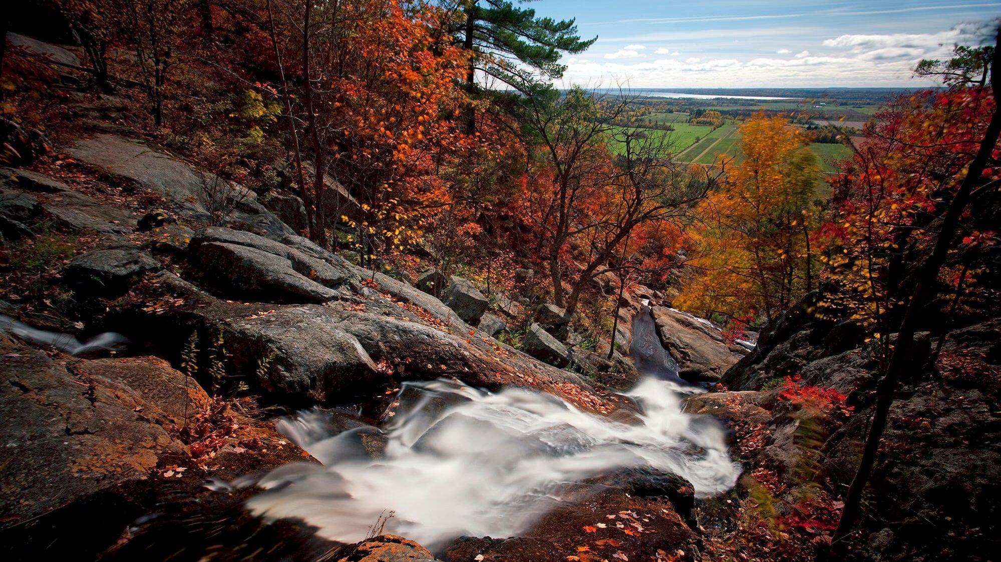 La chute de Luskville en automne, avec des arbres au feuillage rouge et orangé et des champs en arrière-plan.