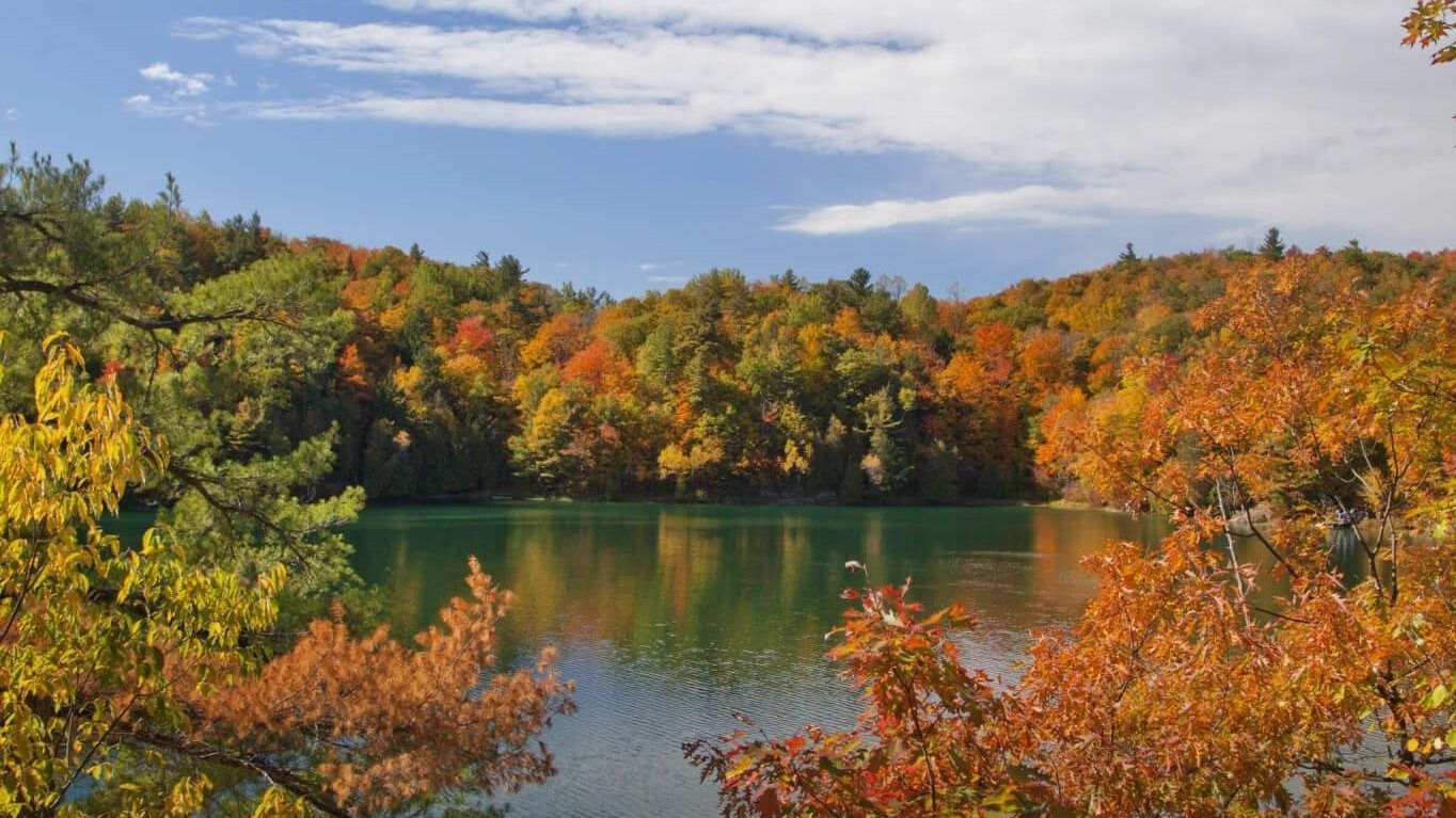Pink Lake in the Fall, with bright orange and yellow leaves