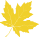 Yellow leaf, meaning we're in early to mid-season