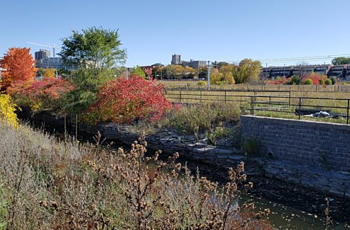 Fall foliage around the stone walls of the heritage aqueduct waterway