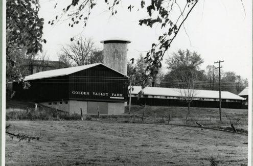 Golden Valley Farm, dans la Ceinture de verdure, près d'Ottawa, en Ontario. Circa 1967. Crédit : Bibliothèque et Archives Canada / Fonds de la Commission de la capitale nationale / e999914943