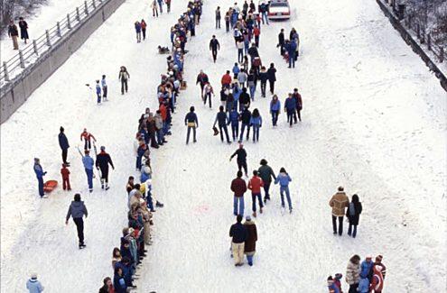 L'une de deux tentatives (1981 et 1982) pour battre le record du monde Guinness de la plus longue chaîne humaine (7,8 km), par solidarité avec Centraide.