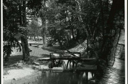 Aire de pique-nique au lac Philippe. Juin 1965. Crédit : Bibliothèque et Archives Canada / Fonds de la Commission de la capitale nationale / e999914322