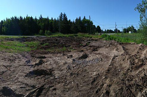 Site 3 (before): Bare ground, no vegetation