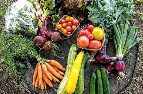 Panier de produits du programme d'agriculture soutenue par la communauté (ASC)