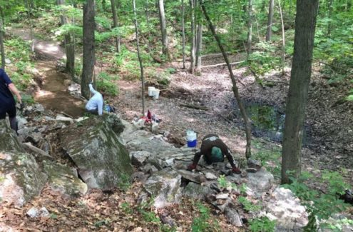 Volunteers at work on a trail