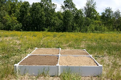 Four planters filled with different types of soil.