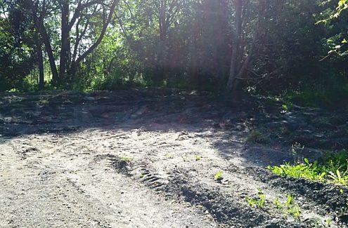 Site 1 (avant) : Sol dénudé, sans végétation.
