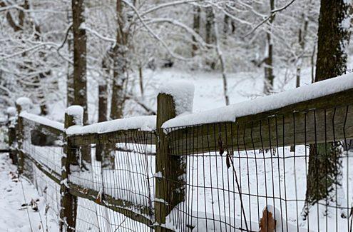 Une clôture enneigée