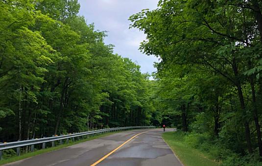 Parkway in Gatineau Park