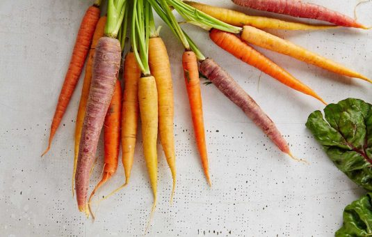 La fraicheur dans votre assiette : goûtez à la Ceinture de verdure