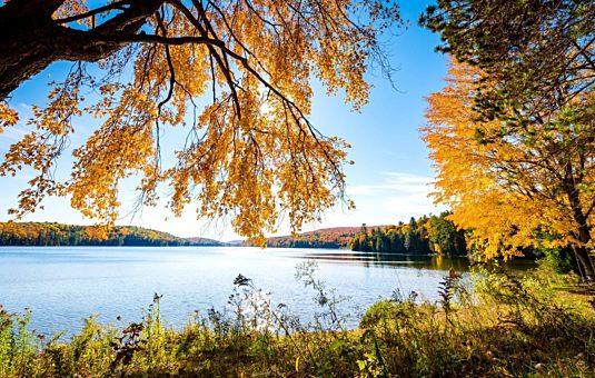 Trois conseils pour profiter des couleurs d'automne au parc de la Gatineau