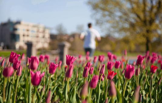 Trois activités de plein air à faire ce printemps