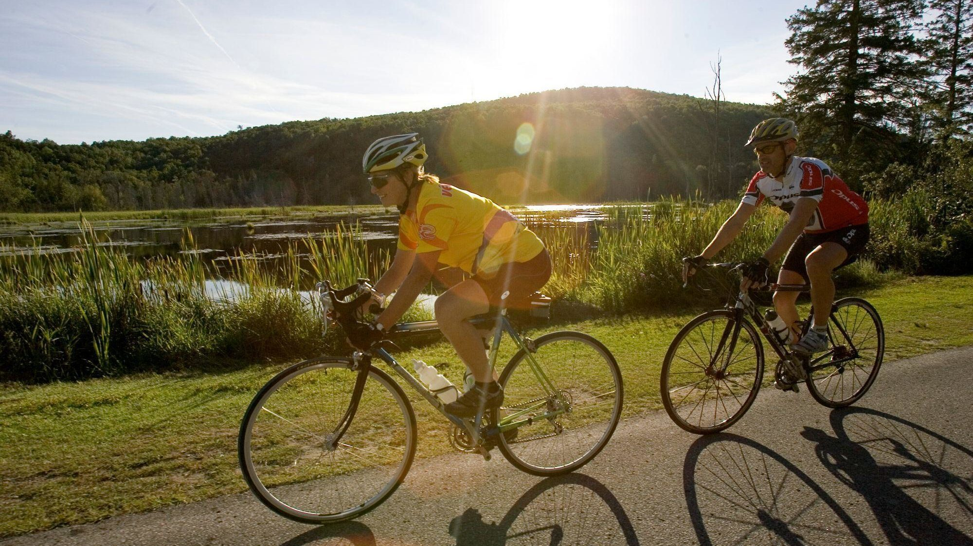 Cyclists on a Gatineau Park parkway on a summer day