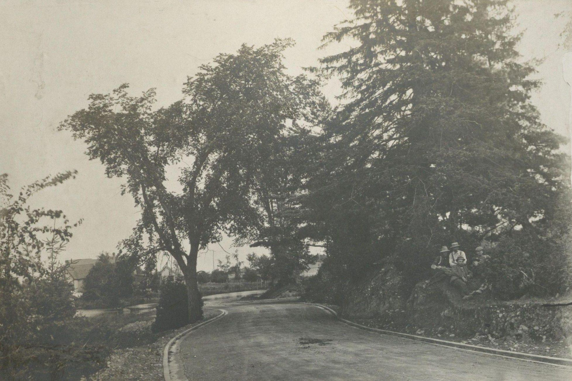 View of the Rideau Canal Driveway, winding through trees, west of Bank Street. 1902. Credit: Library and Archives Canada / E999912077