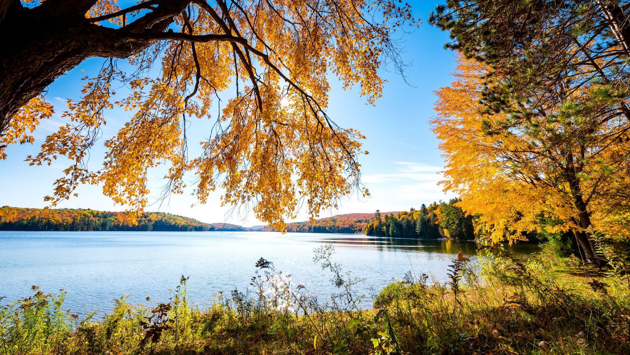 Le lac Philippe en automne avec des arbres au feuillage ocre et orangé en arrière-plan.