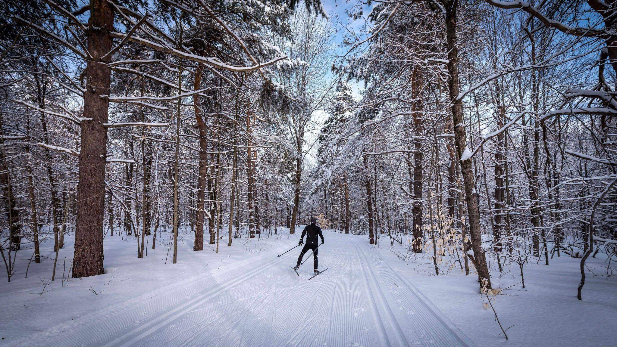 It never ceases to amaze me every time I get to enjoy my favourite winter  activities in Gatineau Park. Although I do have a bit of a competitive  streak fdf501fda